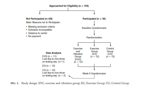 FIG. 1. Study design. EVG, exercise and vibration group; EG, Exercise Group; CG, Control Group.