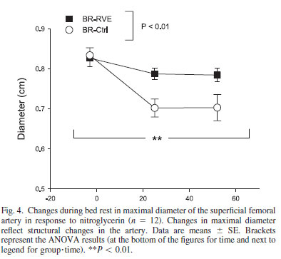 Changes during bed rest in maximal diameter of the superficial femoral artery in response to nitroglycerin